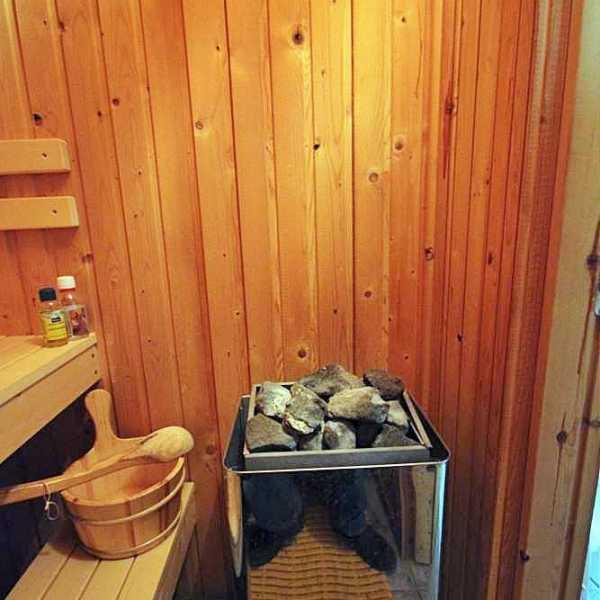 Ferienhaus Nora Sauna Bild 2